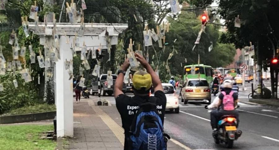 Se revela la verdad detrás de los 'árboles de billetes' que se vieron en Colombia